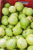 Beeld van groene guave voor verkoop royalty-vrije stock foto
