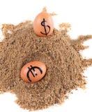 Beeld van grote witte eieren met dollarand euro tekens op een zand Stock Foto's