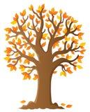 Beeld 6 van het boomonderwerp Royalty-vrije Stock Foto's