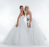 Beeld van het fascineren van modieuze bruiden die in studio stellen Royalty-vrije Stock Afbeeldingen