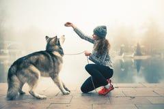 Beeld van jong meisje met haar hond, malamute van Alaska, openlucht Royalty-vrije Stock Foto