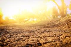 Beeld van land met droge en gebarsten grond royalty-vrije stock afbeeldingen