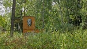 Beeld van Lenin onder een grasrijk gebied stock video