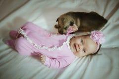 Beeld van leuk meisje in roze kostuum en puppy Stock Afbeeldingen