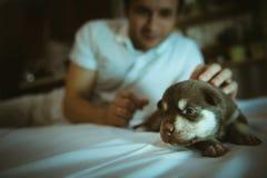 Beeld van leuk weinig puppy in handen van de jonge mens Stock Afbeelding