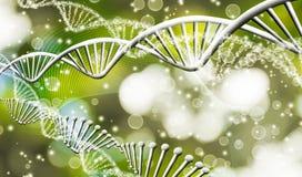 Beeld van moleculaire structuur en ketting van DNA op een groene close-up als achtergrond Royalty-vrije Stock Foto's