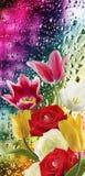 Beeld van mooie bloemen op nat glasclose-up als achtergrond Stock Foto's