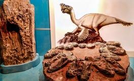 Beeld van Orviraptor en het nest van de dinosaurus royalty-vrije stock foto