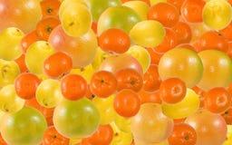 Beeld van sinaasappelen, mandarijnen en grapefruitsclose-up stock foto