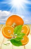 Beeld van sinaasappelen op de lijst stock fotografie