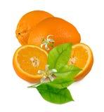 Beeld van sinaasappelen op de lijst royalty-vrije stock foto
