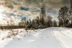 Beeld van sneeuwlandschap en bewolkte hemel Stock Fotografie
