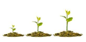 Beeld van stapel van muntstukken met installatie op bovenkant voor zaken, besparing, de groei, economisch concept stock afbeelding