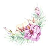 Beeld van tropische bloemen en bladeren De illustratie van de waterverf Stock Fotografie