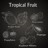beeld van tropische die vruchten op het bord worden getrokken royalty-vrije illustratie