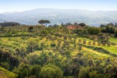 Beeld van typisch Toscaans landschap Stock Foto's