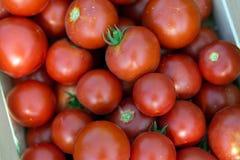 Beeld van vele tomaten in houten krat Stock Fotografie