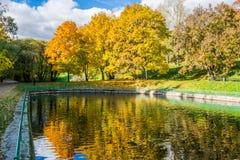 Beeld van a-vijver in een de herfstpark die op gele bomen wijzen Stock Fotografie