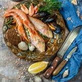 Beeld van vissen, garnalen, schaaldieren stock fotografie