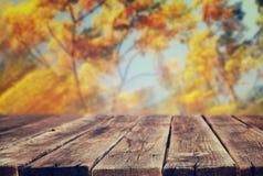Beeld van voor rustieke houten raad en achtergrond van dalingsbladeren in bos Royalty-vrije Stock Afbeeldingen