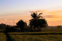 beeld zeer vroeg in de ochtend wordt genomen toen de zon die uitging royalty-vrije stock afbeeldingen