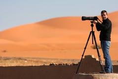 Beelden op de woestijn Stock Foto's