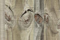 Beelden op hout Stock Foto