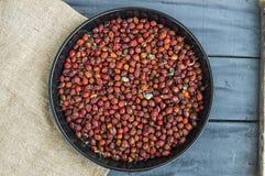 Beelden van rozebottelfruit droog in een dienblad, drogende rozebottel, drogende rozebottel om rozebottelthee te drinken Royalty-vrije Stock Afbeeldingen