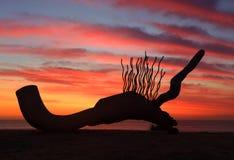 Beeldhouwwerk door het Overzees - Currawong tegen zonsopganghemel die wordt gesilhouetteerd stock foto's