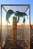Beeldhouwwerk door het Overzeese tentoongestelde voorwerp in Bondi Australië stock fotografie