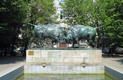 Beeldhouwwerk het Vechten bizons, een monument van kunst in Kaliningrad Royalty-vrije Stock Afbeeldingen
