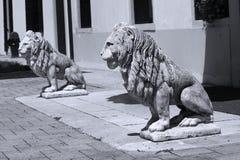 Beeldhouwwerk van leeuw in het Italiaans tuin stock foto