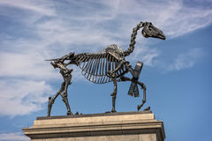 Beeldhouwwerk van skeletachtig paard in Londons Trafalgar Square Royalty-vrije Stock Afbeelding