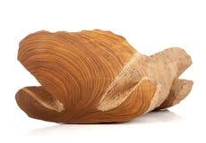 Beeldhouwwerkwieg van hout Royalty-vrije Stock Foto's