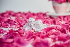 Beeldje van twee antieke kleine mooie engelen van het gips op de witte achtergrond met de roze purpere bloemblaadjes van de pioen stock foto