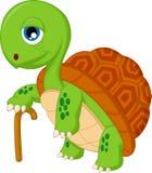 Beeldverhaal bejaarde schildpad Royalty-vrije Stock Afbeeldingen