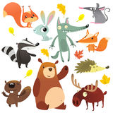 Beeldverhaal bos dierlijke karakters Wilde de inzamelingenvector van beeldverhaaldieren Eekhoorn, muis, das, wolf, vos, bever, be Stock Afbeeldingen