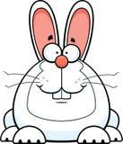 Beeldverhaal Bunny Smiling vector illustratie
