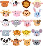 Beeldverhaal dierlijk hoofdpictogram Stock Foto's