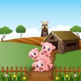 Beeldverhaal drie kleine varkens die op de landbouwbedrijfachtergrond spelen stock illustratie