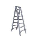 Beeldverhaal Dubbele Ladder vector illustratie