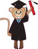 Beeldverhaal een grappige illustratie van de gediplomeerde van de aapschool, Royalty-vrije Stock Fotografie