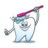 Beeldverhaal gelukkige tand met borstel Royalty-vrije Stock Afbeeldingen