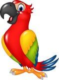 Beeldverhaal grappige die papegaai op witte achtergrond wordt geïsoleerd Stock Afbeeldingen