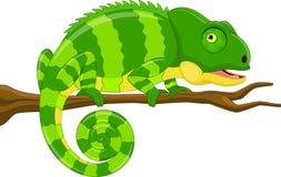 Beeldverhaal groen kameleon stock illustratie