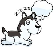 Beeldverhaal Husky Dreaming vector illustratie