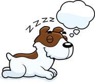 Beeldverhaal Jack Russell Terrier Dreaming vector illustratie