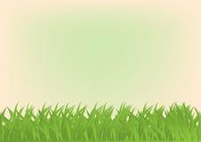 Beeldverhaal rechthoekige achtergrond met groen gras Royalty-vrije Stock Foto's