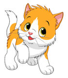 Beeldverhaal tweekleurig katje vector illustratie