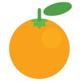 Beeldverhaal vector grafisch sappig oranje die fruit in witte rug wordt geïsoleerd Royalty-vrije Stock Fotografie